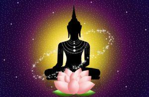 buddha ed il loto