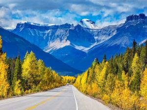 foliage in viaggio montagne-rocciose-alberta-canada