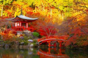 foliage Giappone