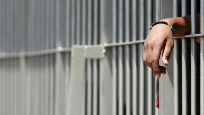 """"""" A scuola di libertà """": la linea sottile tra violazione e condanna"""